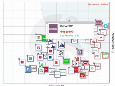 ERP Systems Momentum Grid® Description